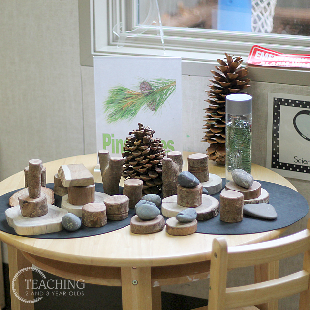 Preschool Classroom Science Area Ideas