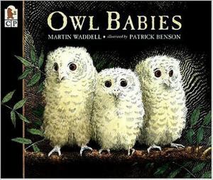 favorite books for the preschool classroom