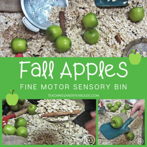 Fall Apple Sensory Bin for Toddlers and Preschoolers