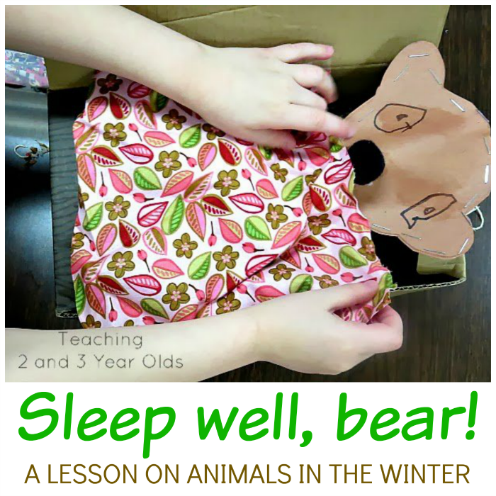 Preschool Winter Theme: Sleep Well, Bears