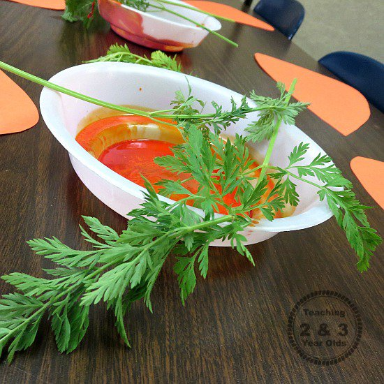 Spring Craft with Carrots