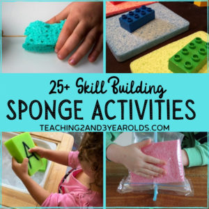 25+ Toddler and Preschool Sponge Activities