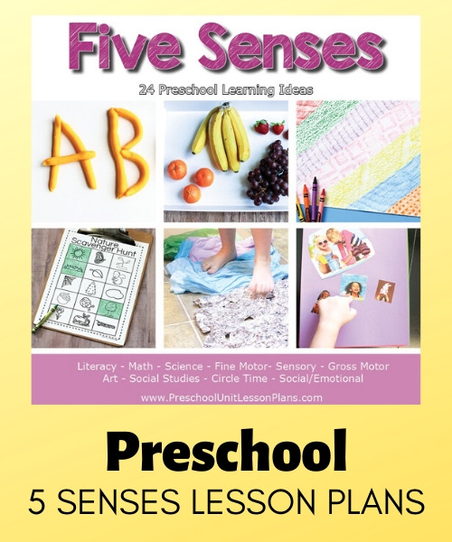 preschool 5 SENSES LESSON PLANS