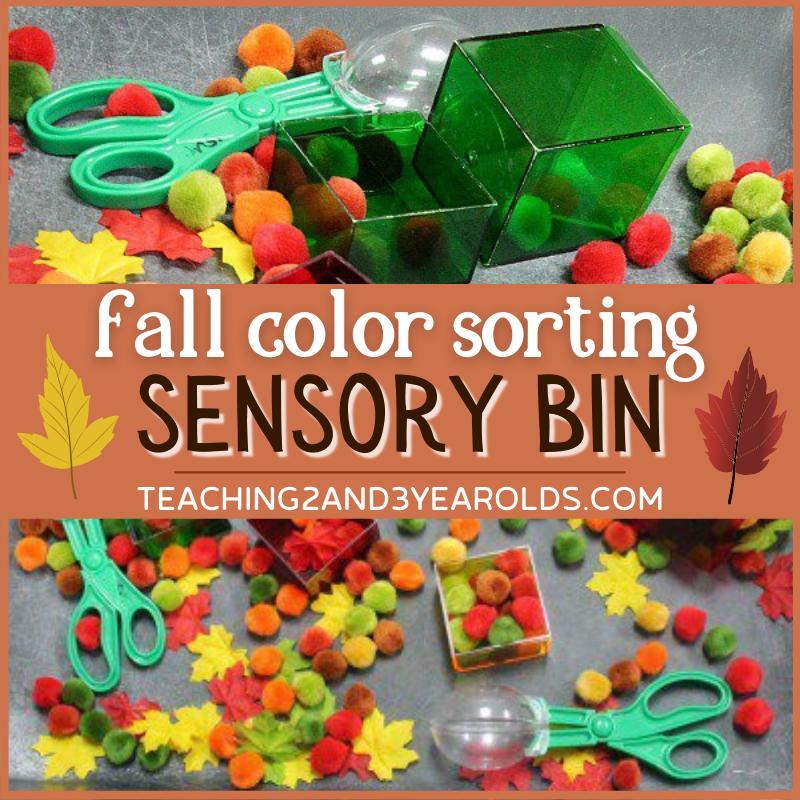 Color Sorting Fall Sensory Bin for Preschoolers