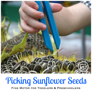 Fine Motor Fun with Sunflowers