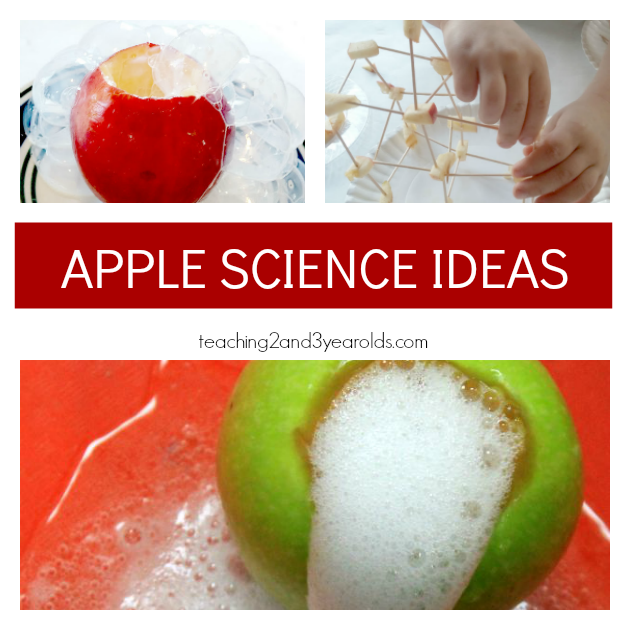 Preschool Apple Theme Ideas for Science- Teaching 2 and 3 Year Olds