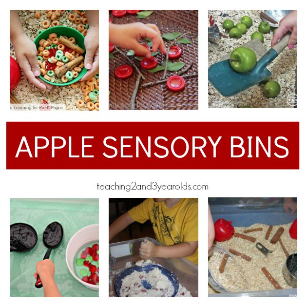 Preschool Apple Theme Ideas for Sensory Bin - Teaching 2 and 3 Year Olds