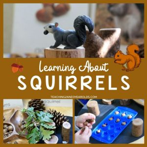 Preschool Squirrel Activities