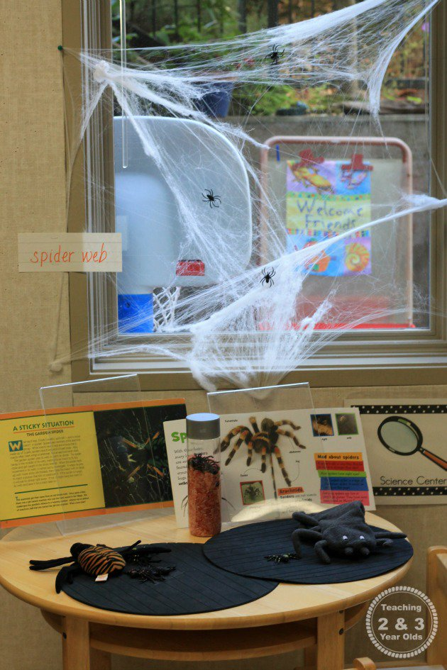 Preschool Science Exploring Spiders