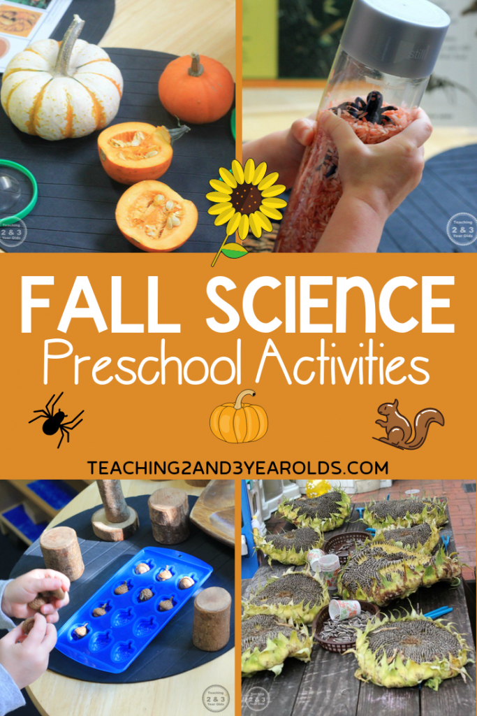 Explore Nature with these Preschool Fall Science Activities