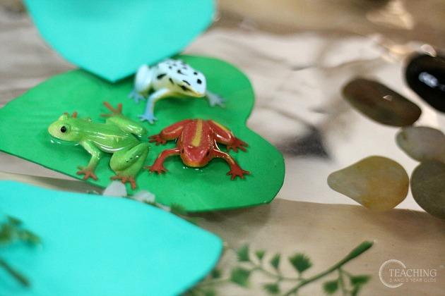 Frog Activities