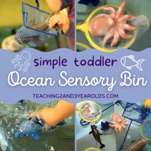 How to Make a Preschool Ocean Activity Using the Sensory Bin