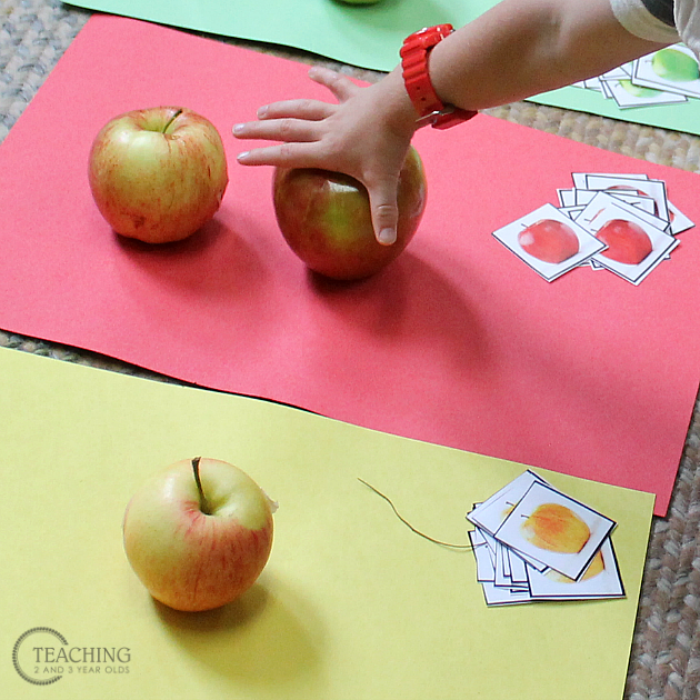 preschool apple sorting free printable