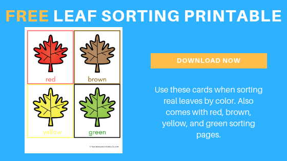 Preschool Leaf Sorting Activity with Free Printable Cards