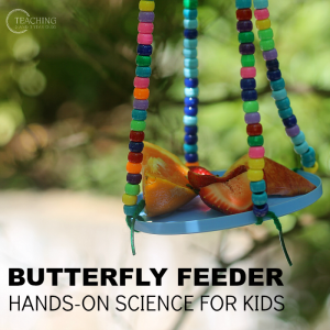 How to Make an Easy Butterfly Feeder for a Spring Science Activity