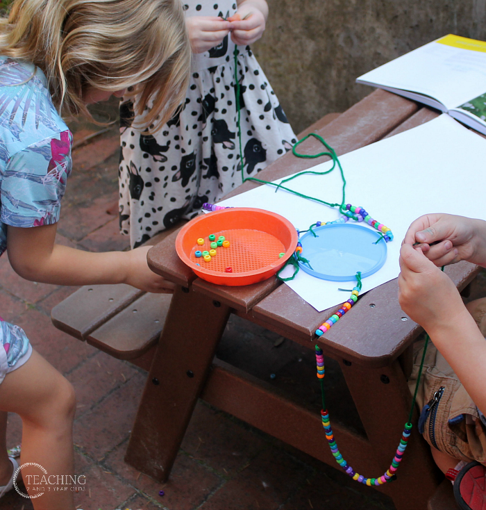 Preschool Science: Make a Butterfly Feeder