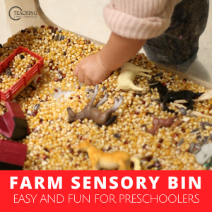Here's an Easy Farm Sensory Bin for Preschoolers