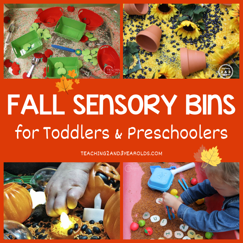 Fall Sensory Bins Toddlers and Preschoolers Love