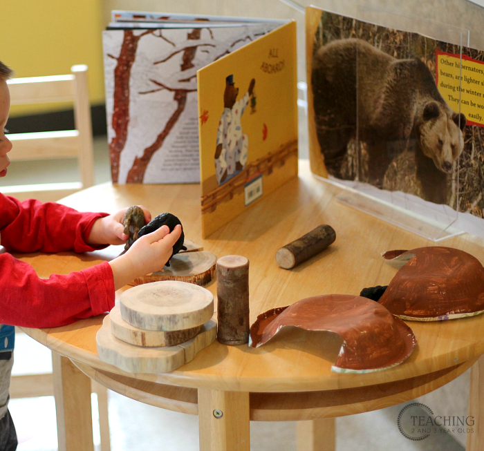 Teaching Toddlers and Preschoolers about Animals that Hibernate