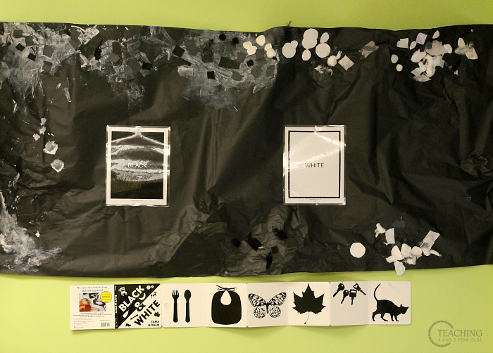 Learning About Opposites with a Fun Black and White Sorting Activity