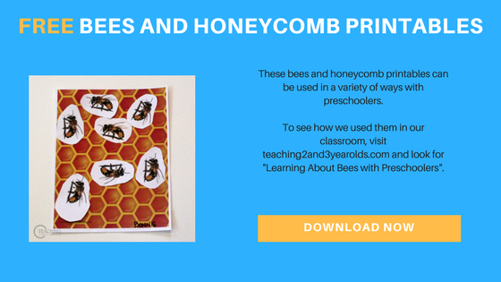 Learning About Bees with Preschoolers (with Printables)