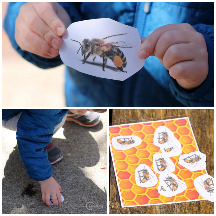 Learning About Bees with Preschoolers