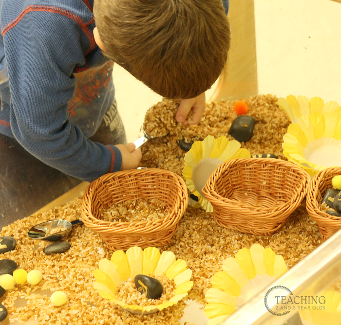 Build Literacy Skills with this Flower Sensory Bin