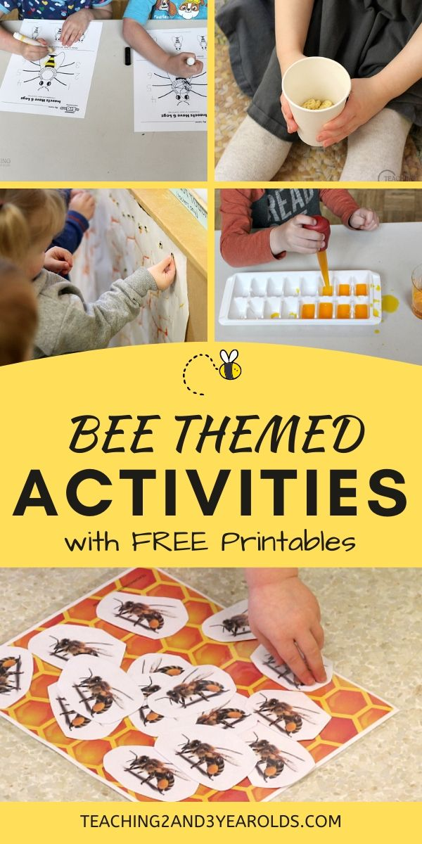 Learning About Bees