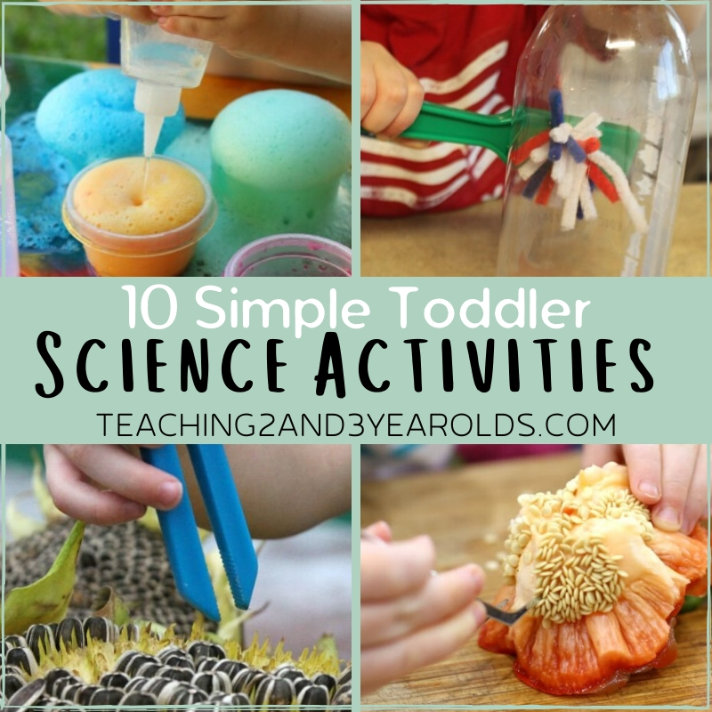 10 Toddler Science Activities that Are Full of Fun
