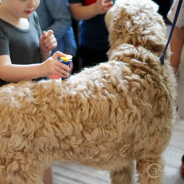 Setting Up the Pet Theme in the Toddler and Preschool Classroom