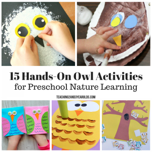 15 Hands-On Preschool Owl Activities that are Fun!
