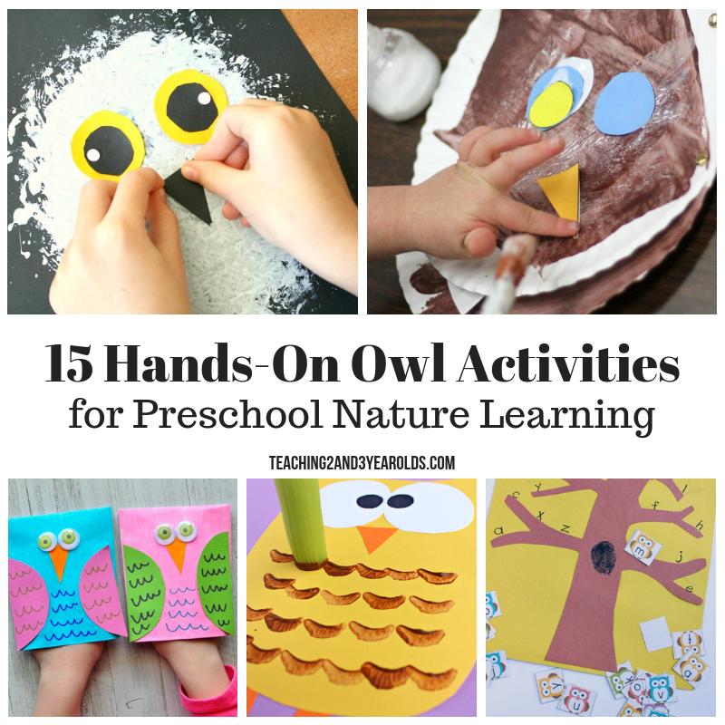 15 Hands-On Preschool Owl Activities that are Fun!