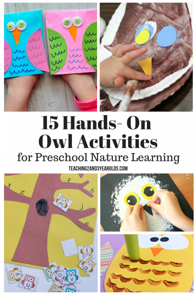 his collection of preschool owl activities is a great addition to your preschool nature theme. A hands-on fun way to learn about the outdoors!