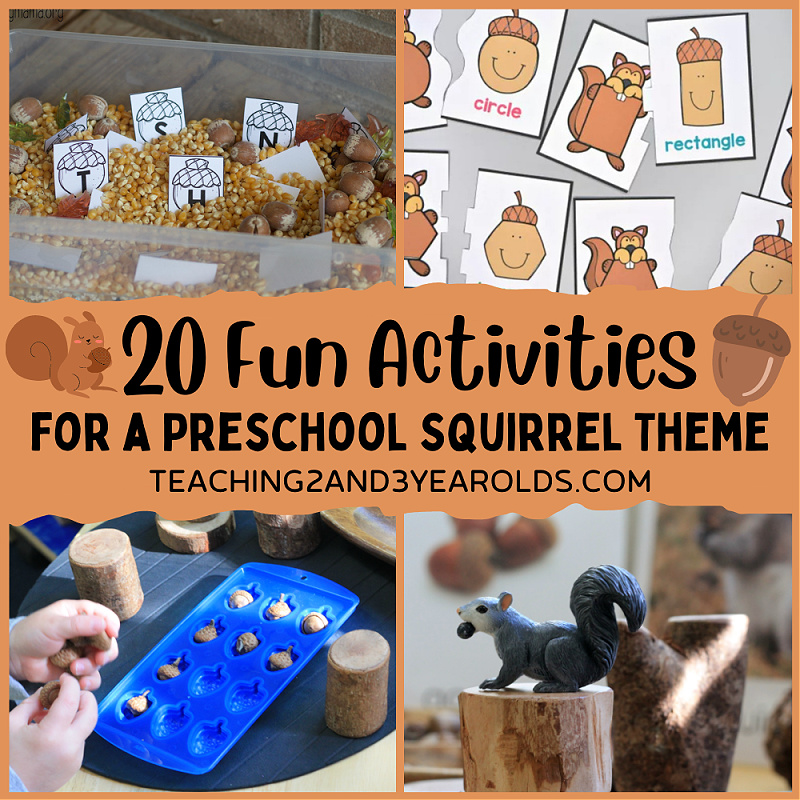 preschool squirrel theme