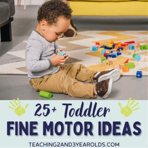 25+ Easy Toddler Fine Motor Activities