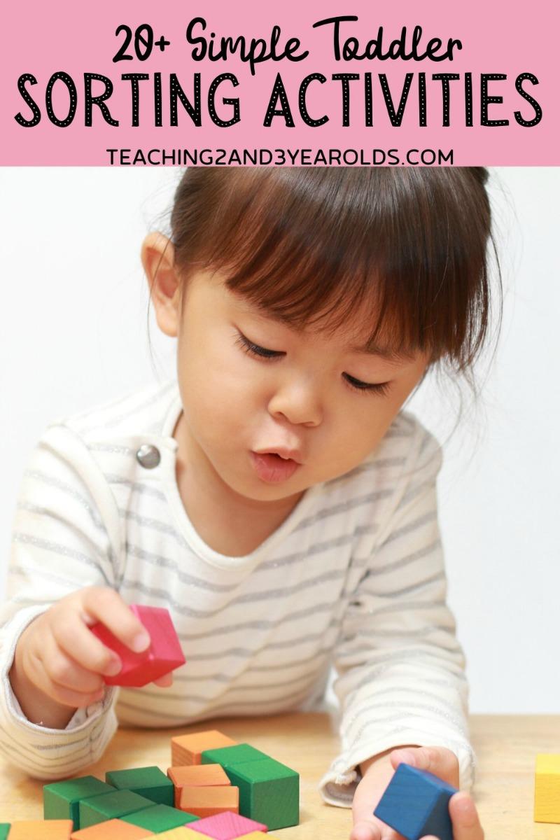 20+ Fun and Simple Toddler Sorting Activities