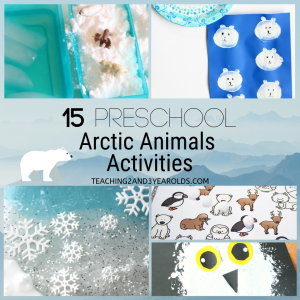 15 preschool arctic animals activities
