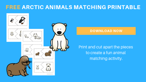 free preschool arctic animals printables