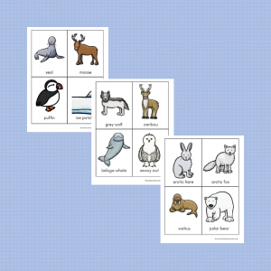 free toddler preschool arctic animals matching cards