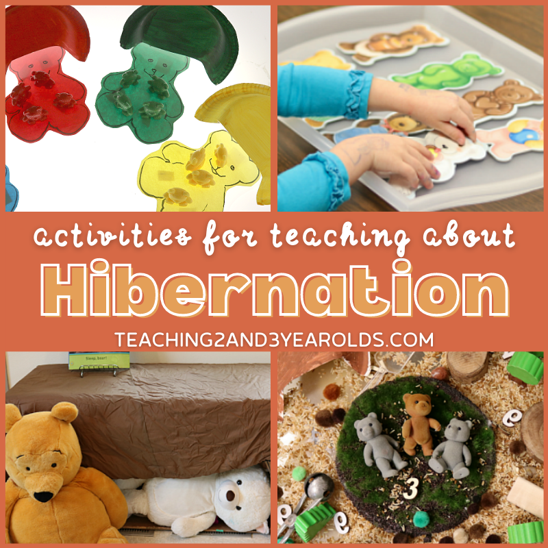Toddler and Preschool Hibernation Theme Activities