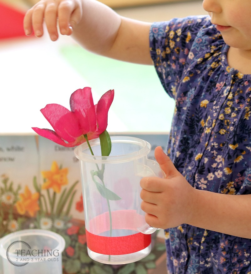 Spring Color Sorting Activity that Goes with Your Gardening Theme