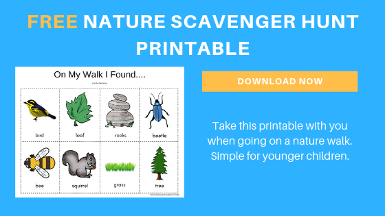 free toddler nature scavenger hunt printable