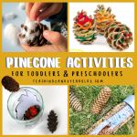 Fun Pinecone Activities for Toddlers and Preschoolers