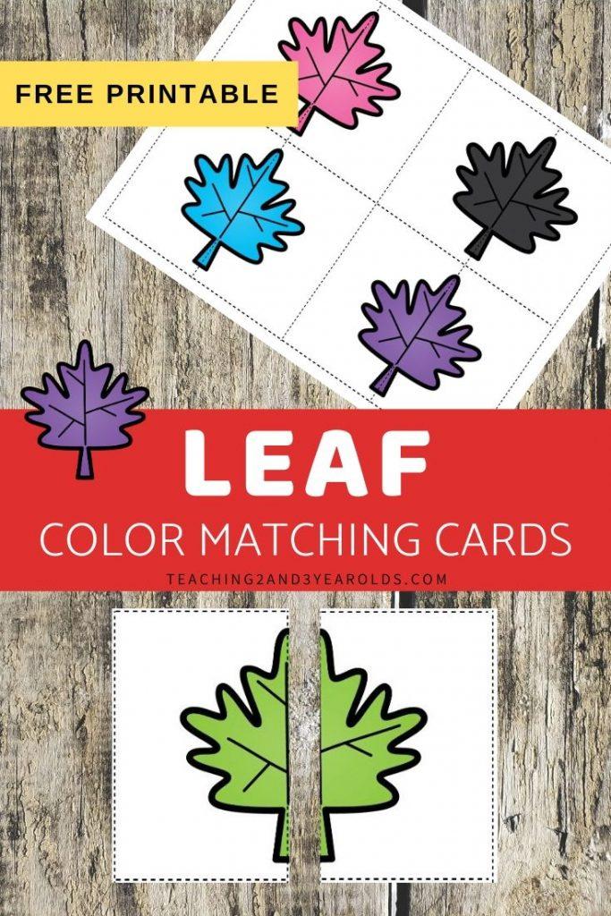Leaf Color Matching Printable