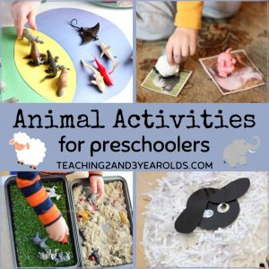 Fun Animal Activities for Preschoolers