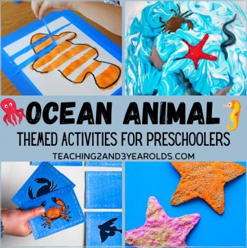 Ocean Animal Themed Activities for Preschoolers