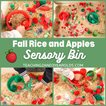 Rice Apple Sensory Bin for Fine Motor Fun